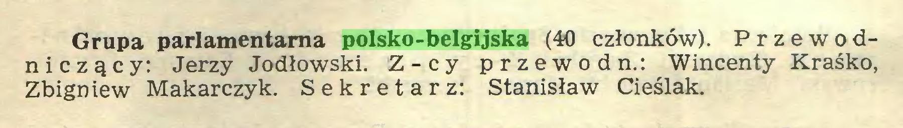 (...) Grupa parlamentarna polsko-belgijska (40 członków). Przewodniczący: Jerzy Jodłowski. Z-cy przewód n.: W incenty Kraśko, Zbigniew Makarczyk. Sekretarz: Stanisław Cieślak...
