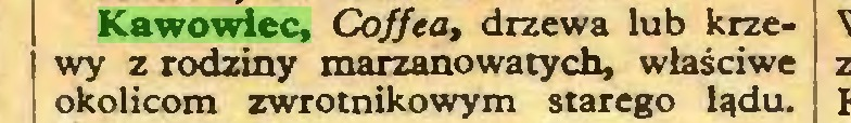 (...) Kawowiec, Coffea, drzewa lub krzewy z rodziny marzanowatych, właściwe okolicom zwrotnikowym starego lądu...