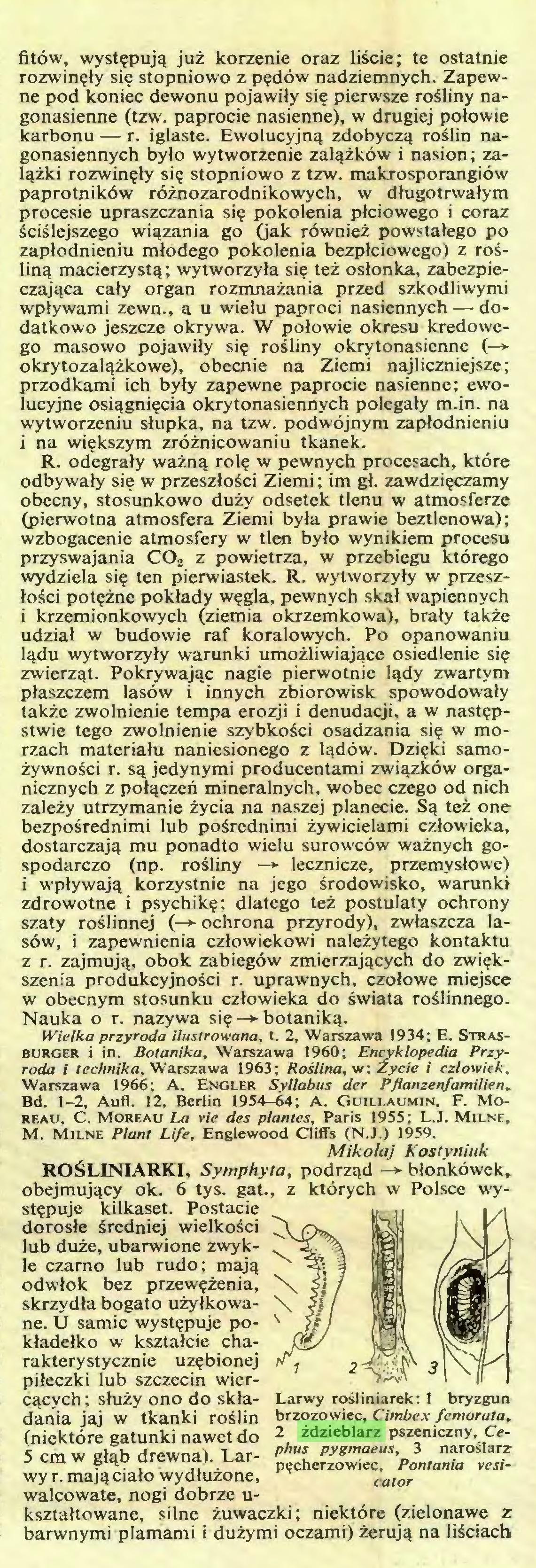 (...) wy r. mają ciało wydłużone, walcowate, nogi dobrze ukształtowane, silne żuwaczki; niektóre (zielonawe z barwnymi plamami i dużymi oczami) żerują na liściach Larwy rośliniarek: 1 bryzgun brzozowiec, Cimbex femorata, 2 ździeblarz pszeniczny, Cephus pygmaeus, 3 naroślarz pęcherzowiec, Pontania vesicator ROTA...