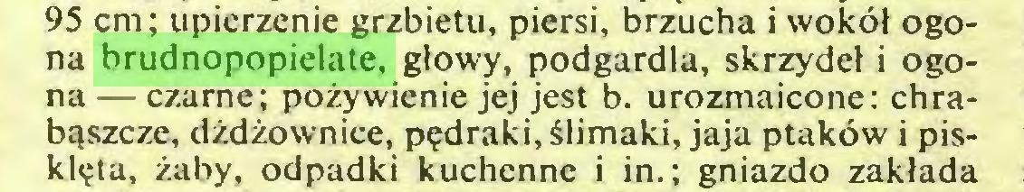 (...) 95 cm; upierzenie grzbietu, piersi, brzucha i woköl ogona brudnopopielate, glowy, podgardla, skrzydel i ogona — czarne; pozywienie jej jest b. urozmaicone: chrabqszcze, dzdzownice, p?draki,älimaki, jaja ptaköw i piskl?ta, zaby, odpadki kuchennc i in.; gniazdo zaklada...