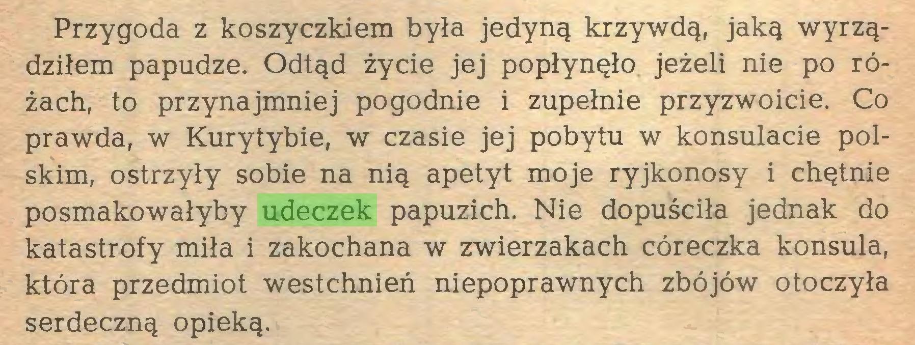 (...) Przygoda z koszyczkiem była jedyną krzywdą, jaką wyrządziłem papudze. Odtąd życie jej popłynęło jeżeli nie po różach, to przynajmniej pogodnie i zupełnie przyzwoicie. Co prawda, w Kurytybie, w czasie jej pobytu w konsulacie polskim, ostrzyły sobie na nią apetyt moje ryjkonosy i chętnie posmakowałyby udeczek papuzich. Nie dopuściła jednak do katastrofy miła i zakochana w zwierzakach córeczka konsula, która przedmiot westchnień niepoprawnych zbójów otoczyła serdeczną opieką...