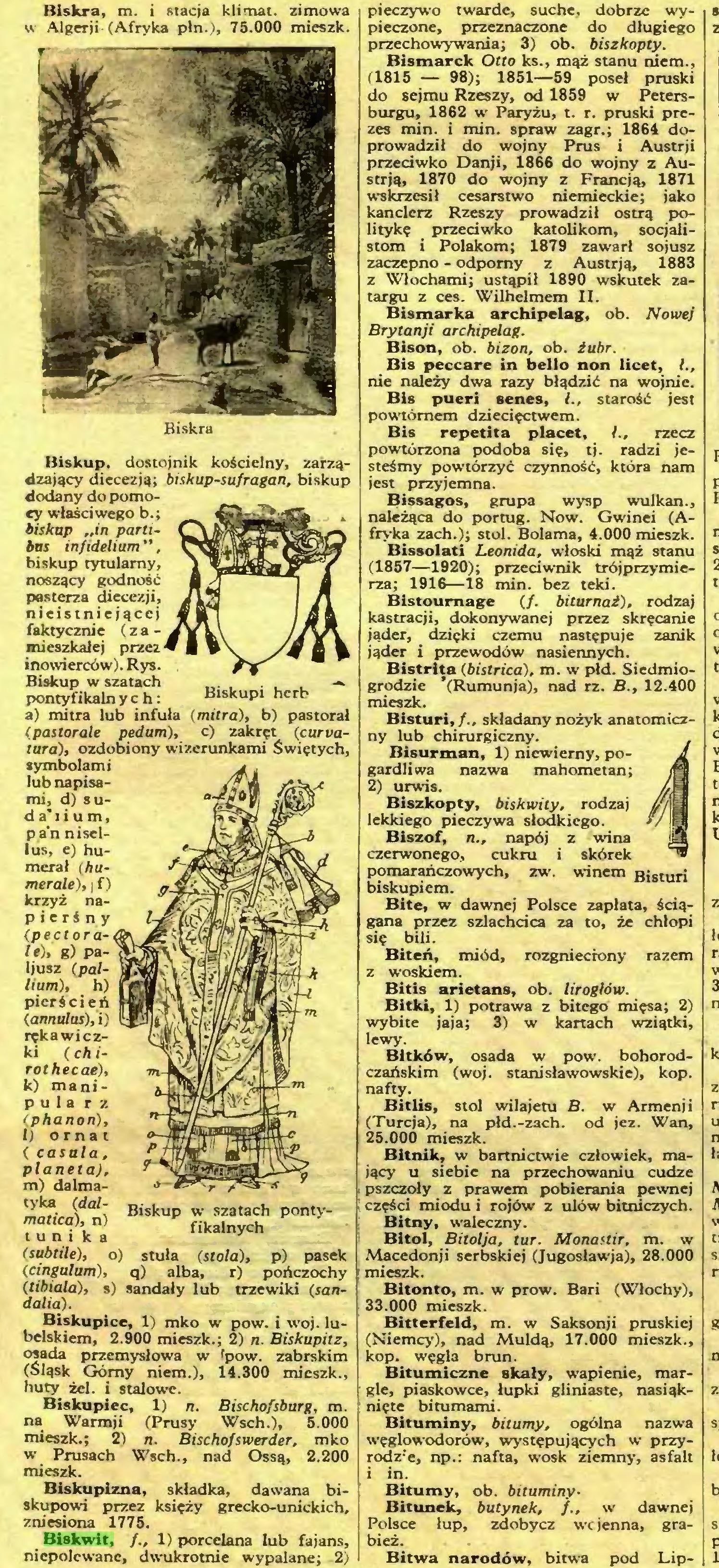 (...) Biskwit, 1) porcelana lub fajans, niepolewane, dwukrotnie wypalane; 2) Biskup w szatach pontyfikalnych pieczywo twarde, suche, dobrze wypieczone, przeznaczone do długiego przechowywania; 3) ob. biszkopty...