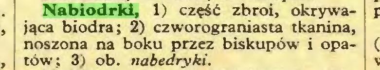 (...) Nabiodrki, 1) część zbroi, okrywająca biodra; 2) czworograniasta tkanina, noszona na boku przez biskupów i Opatów; 3) ob. nabedryki...
