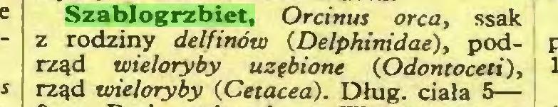 (...) Szablogrzbiet, Orcinus orca, ssak z rodziny delfinów (Delphinidae), podrząd wieloryby uzębione (Odontoceti), rząd wieloryby {Ce tace a). Dług. ciała 5—...