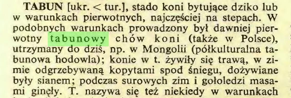 (...) TABUN [ukr. < tur.], stado koni bytujące dziko lub w warunkach pierwotnych, najczęściej na stepach. W podobnych warunkach prowadzony był dawniej pierwotny tabunowy chów koni (także w Polsce), utrzymany do dziś, np. w Mongolii (półkulturalna tabunowa hodowla); konie w t. żywiły się trawą, w zimie odgrzebywaną kopytami spod śniegu, dożywiane były sianem; podczas surowych zim i gołoledzi masami ginęły. T. nazywa się też niekiedy w warunkach...