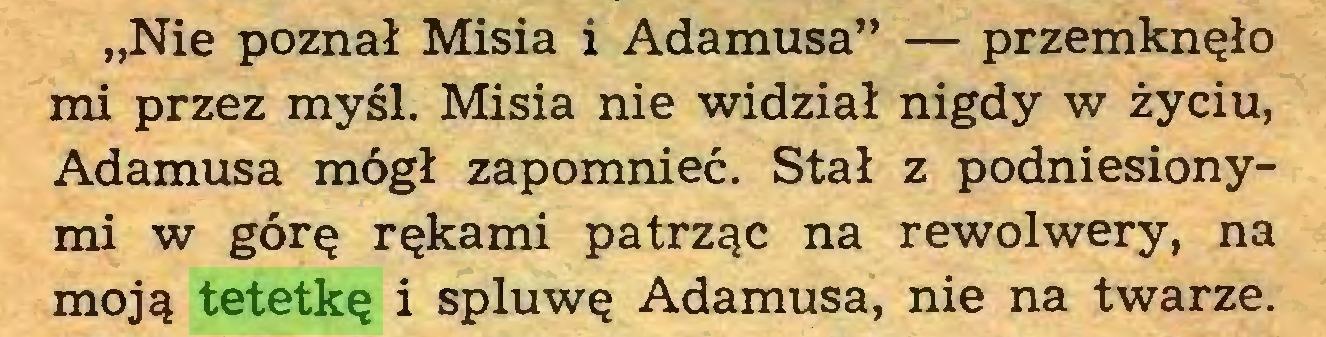 """(...) """"Nie poznał Misia i Adamusa"""" — przemknęło mi przez myśl. Misia nie widział nigdy w życiu, Adamusa mógł zapomnieć. Stał z podniesionymi w górę rękami patrząc na rewolwery, na moją tetetkę i spluwę Adamusa, nie na twarze..."""