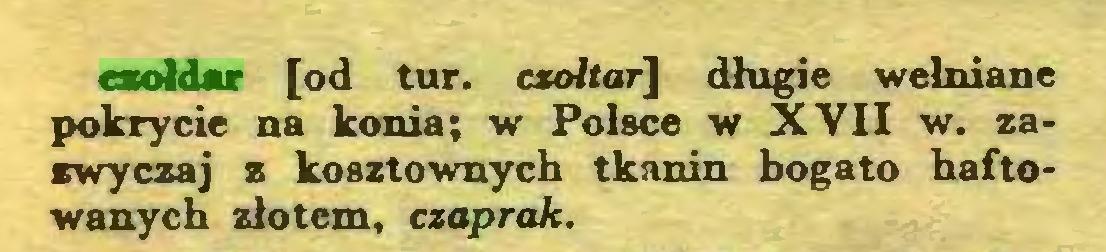 (...) czołdar [od tur. csołtar] długie wełniane pokrycie na konia; w Polsce w XVII w. zazwyczaj z kosztownych tkanin bogato haftowanych złotem, czaprak...