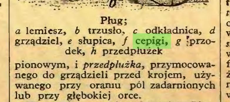 (...) Pług; a lemiesz, b trzusło, c odkładnica, d grządziel, e słupicą, / cepigi, g 'przodek, h przedplużek pionowym, i przedplużka, przymocowanego do grządzieli przed krojem, używanego przy oraniu pól zadamionych lub przy głębokiej orce...