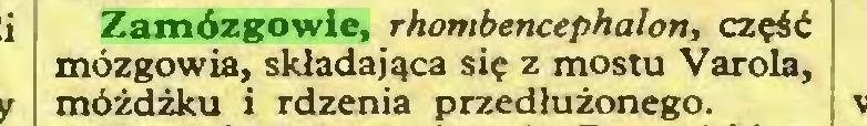 (...) Zamózgowie, rhombencephaton, część mózgowia, składająca się z mostu Varola, móżdżku i rdzenia przedłużonego...
