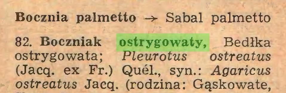 (...) Bocznia palmetto Sabal palmetto 82. Boczniak ostrygowaty, Bedłka ostrygo wata; Pleurotus ostreatus (Jacq. ex Fr.) Quel., syn.: Agaricus ostreatus Jacq. (rodzina: Gąskowate,...