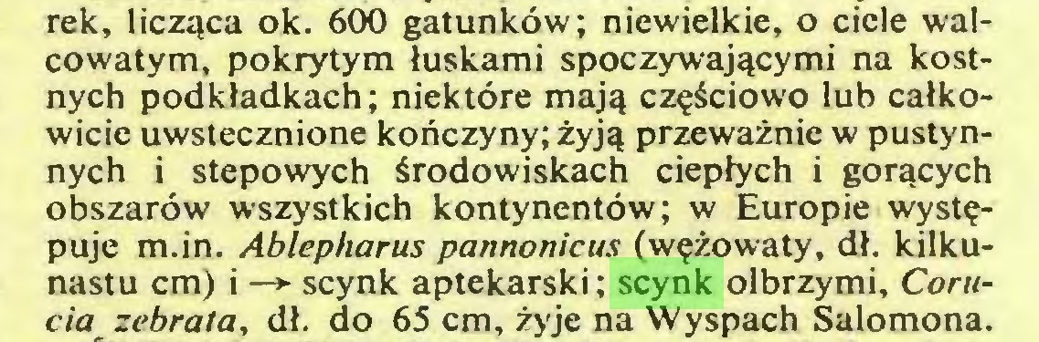 (...) rek, licząca ok. 600 gatunków; niewielkie, o ciele walcowatym, pokrytym łuskami spoczywającymi na kostnych podkładkach; niektóre mają częściowo lub całkowicie uwstecznione kończyny; żyją przeważnie w pustynnych i stepowych środowiskach ciepłych i gorących obszarów wszystkich kontynentów; w Europie występuje m.in. Ablepharus pannonicus (wężowaty, dł. kilkunastu cm) i —* scynk aptekarski; scynk olbrzymi, Corucia zebrata, dł. do 65 cm, żyje na Wyspach Salomona...