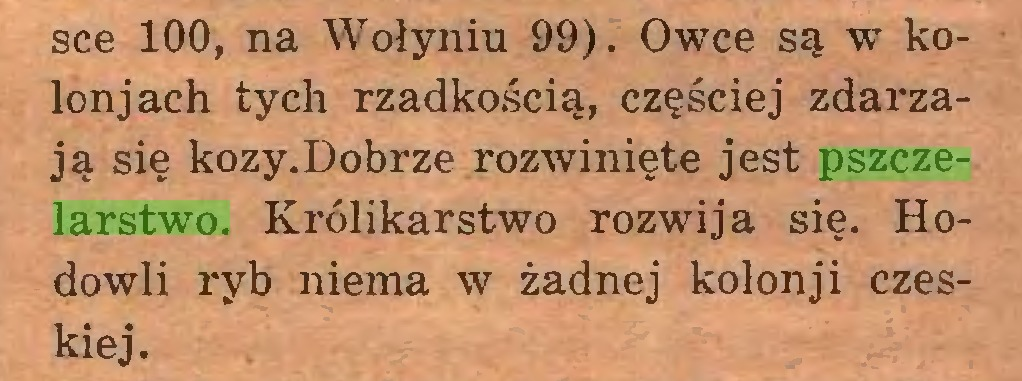 (...) sce 100, na Wołyniu 99). Owce są w kolon j ach tych rzadkością, częściej zdarzają się kozy.Dobrze rozwinięte jest pszczelarstwo. Królikarstwo rozwija się. Hodowli ryb niema w żadnej kolonji czeskiej...