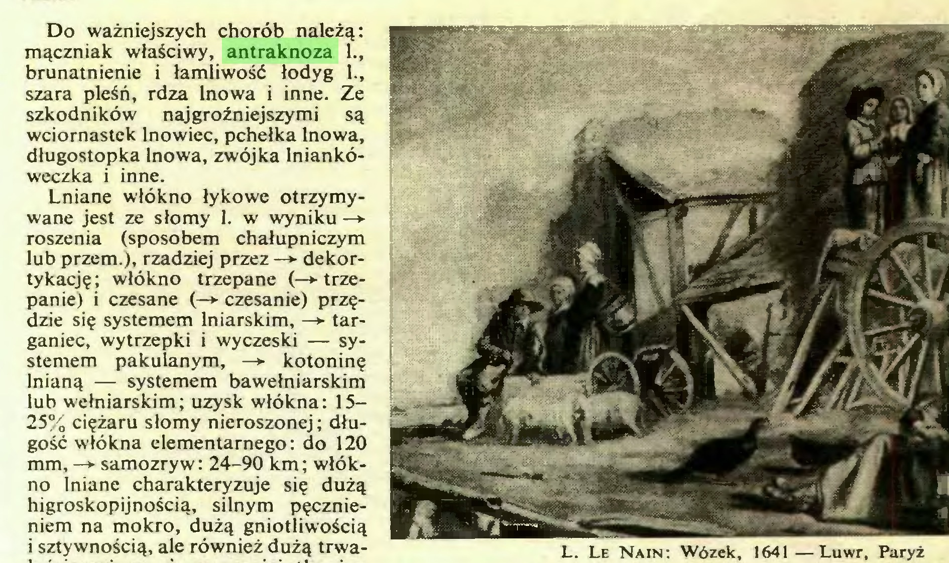 (...) L. Le Nain: Wózek, 1641—Luwr, Paryż Do ważniejszych chorób należą: mączniak właściwy, antraknoza 1., brunatnienie i łamliwość łodyg 1., szara pleśń, rdza lnowa i inne. Ze szkodników najgroźniejszymi są wciornastek lnowiec, pchełka lnowa, długostopka lnowa, zwójka lniankóweczka i inne...