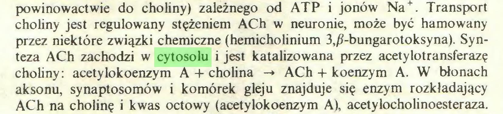 (...) . Transport choliny jest regulowany stężeniem ACh w neuronie, może być hamowany przez niektóre związki chemiczne (hemicholinium 3,/?-bungarotoksyna). Synteza ACh zachodzi w cytosolu i jest katalizowana przez acetylotransferazę choliny: acetylokoenzym A + cholina -» ACh -t- koenzym A. W błonach aksonu, synaptosomów i komórek gleju znajduje się enzym rozkładający ACh na cholinę i kwas octowy (acetylokoenzym A), acetylocholinoesteraza...