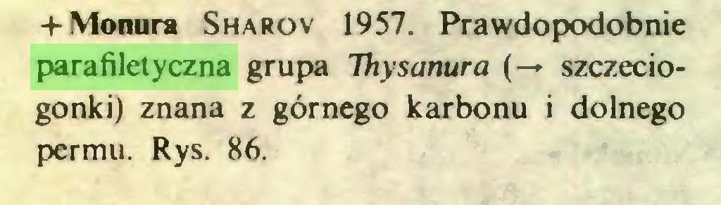 (...) + Monura Sharov 1957. Prawdopodobnie parafiletyczna grupa Thysanura (— szczeciogonki) znana z górnego karbonu i dolnego permu. Rys. 86...
