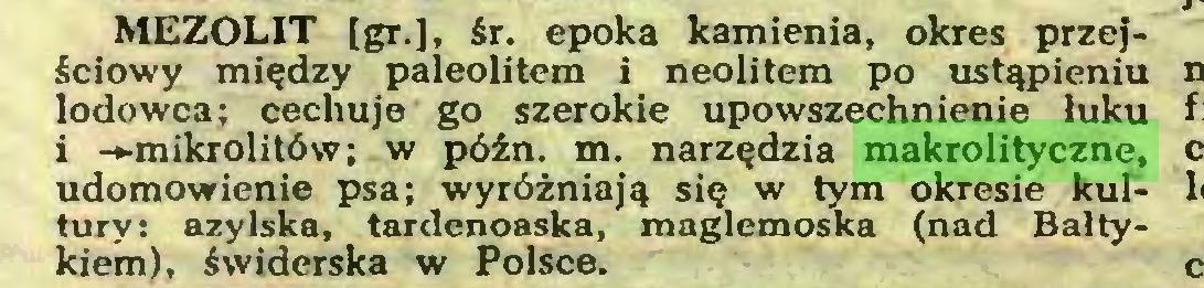 (...) MEZOLIT [gr.], śr. epoka kamienia, okres przejściowy między paleolitem i neolitem po ustąpieniu lodowca; cechuje go szerokie upowszechnienie łuku i —mikrolitów; w późn. m. narzędzia makrolityczne, udomowienie psa; wyróżniają się w tym okresie kultury: azylska, tardenoaska, maglemoska (nad Bałtykiem), świderska w Polsce...