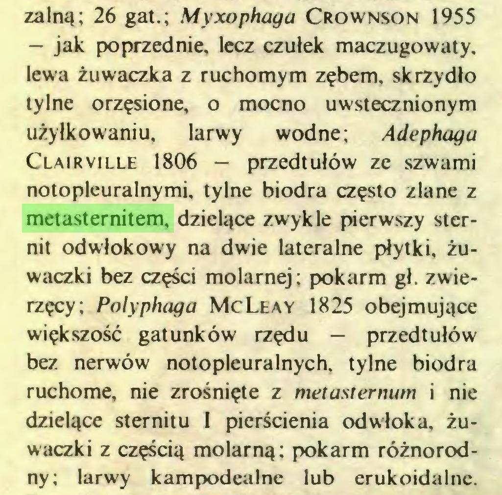 (...) zalną; 26 gat.; Myxophaga Crownson 1955 — jak poprzednie, lecz czułek maczugowaty, lewa żuwaczka z ruchomym zębem, skrzydło tylne orzęsione, o mocno uwstecznionym użyłkowaniu, larwy wodne; Adephaga Clairville 1806 — przedtułów ze szwami notopleuralnymi, tylne biodra często zlane z metasternitem, dzielące zwykle pierwszy sternit odwłokowy na dwie lateralne płytki, żuwaczki bez części molarnej; pokarm gł. zwierzęcy; Polyphaga McLeay 1825 obejmujące większość gatunków rzędu — przedtułów bez nerwów notopleuralnych, tylne biodra ruchome, nie zrośnięte z metasternum i nie dzielące stemit u I pierścienia odwłoka, żuwaczki z częścią molarną; pokarm różnorodny; larwy kampodealne lub erukoidalne...