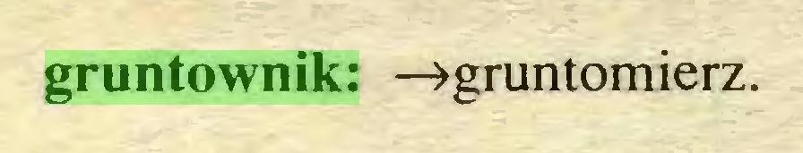 (...) gruntownik: —»gruntomierz...