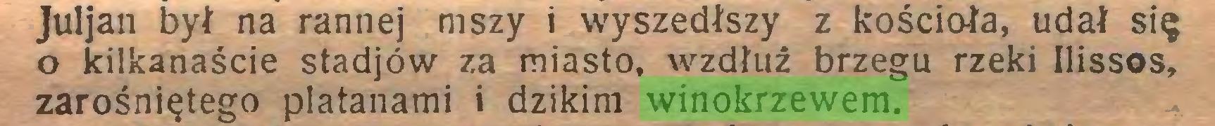 (...) Juljan był na rannej mszy i wyszedłszy z kościoła, udał się 0 kilkanaście stadjów za miasto, wzdłuż brzegu rzeki Ilissos, zarośniętego platanami i dzikim winokrzewem...