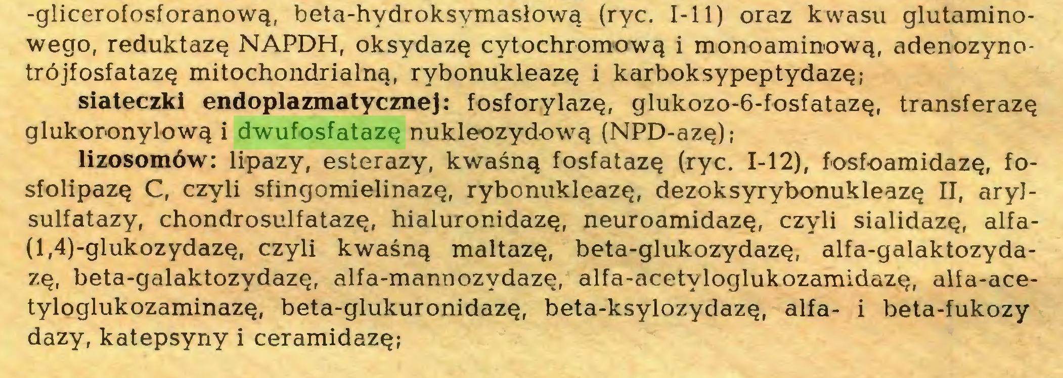 (...) -glicerofosforanową, beta-hydroksymasłową (ryc. I-11) oraz kwasu glutaminowego, reduktazę NAPDH, oksydazę cytochromową i monoaminową, adenozynotrójfosfatazę mitochondrialną, rybonukleazę i karboksypeptydazę; siateczki endoplazmatycznej: fosforylazę, glukozo-6-fosfatazę, transferazę glukoronylową i dwufosfatazę nukleozydową (NPD-azę); lizosomów: lipazy, esterazy, kwaśną fosfatazę (ryc. 1-12), fosfoamidazę, fosfolipazę C, czyli sfingomielinazę, rybonukleazę, dezoksyrybonukleazę II, aryJsulfatazy, chondrosulfatazę, hialuronidazę, neuroamidazę, czyli sialidazę, alfa(l,4)-glukozydazę, czyli kwaśną maltazę, beta-glukozydazę, alfa-galaktozydazę, beta-galaktozydazę, alfa-mannozydazę, alfa-acetyloglukozamidazę, alia-acetyloglukozaminazę, beta-glukuronidazę, beta-ksylozydazę, alfa- i beta-fukozy dazy, katepsyny i ceramidazę;...
