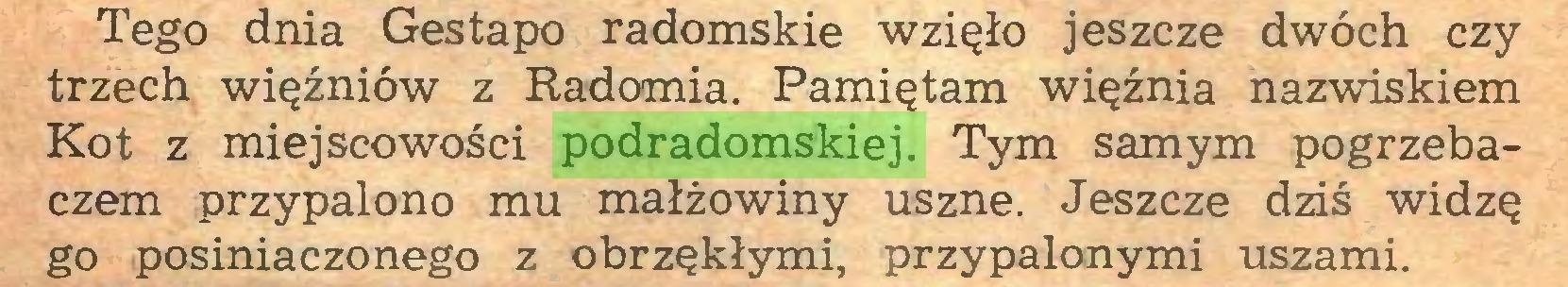(...) Tego dnia Gestapo radomskie wzięło jeszcze dwóch czy trzech więźniów z Radomia. Pamiętam więźnia nazwiskiem Kot z miejscowości podradomskiej. Tym samym pogrzebaczem przypalono mu małżowiny uszne. Jeszcze dziś widzę go posiniaczonego z obrzękłymi, przypalonymi uszami...