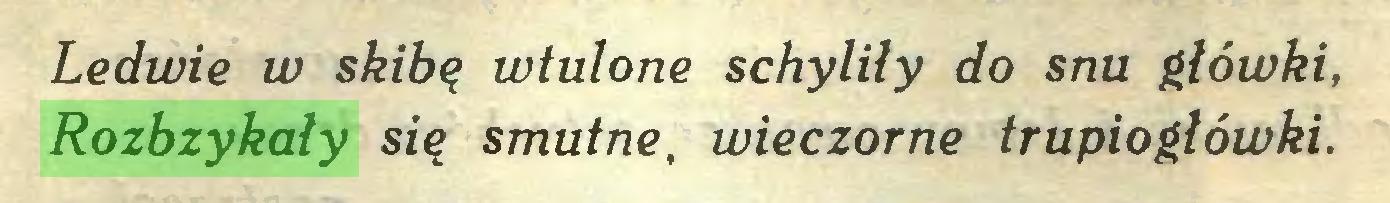 (...) Ledwie w skibą wtulone schyliły do snu główki, Rozbzykały sią smutne, wieczorne trupiogłówki...