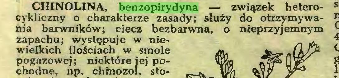 (...) CHINOLINA, benzopirydyna — związek heterocykliczny o charakterze zasady; służy do otrzymywania barwników; ciecz bezbarwna, o nieprzyjemnym zapachu; występuje w niewielkich ilościach w smole pogazowej; niektóre jej pochodne, np. chmozol, sto...