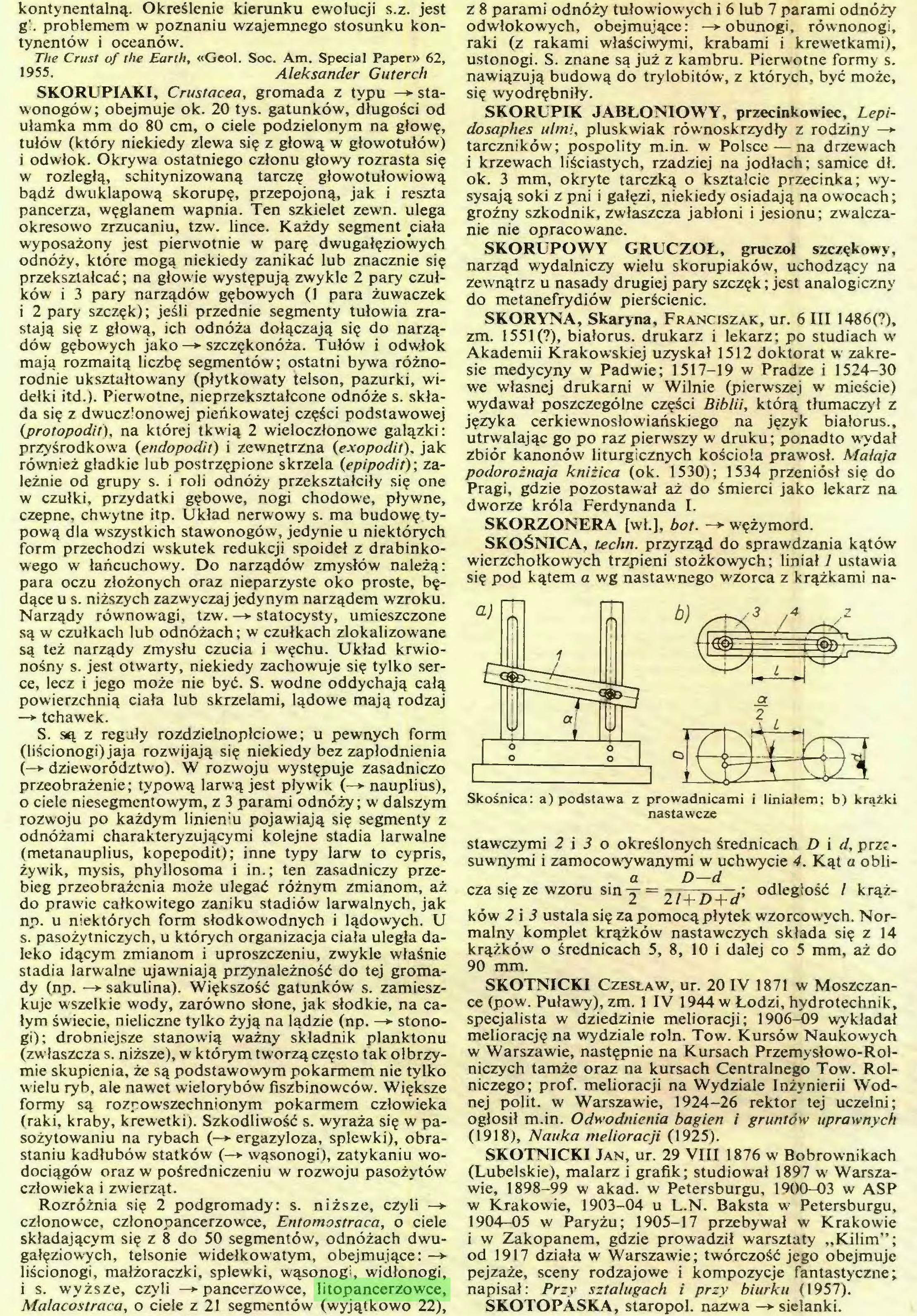(...) Rozróżnia się 2 podgromady: s. niższe, czyli —► członowce, członopancerzowce, Entomostraca, o ciele składającym się z 8 do 50 segmentów, odnóżach dwugałęziowych, telsonie widełkowatym, obejmujące: —> liścionogi, małżoraczki, śpiewki, wąsonogi, widłonogi, 1 s. wyższe, czyli —► pancerzowce, litopancerzowce, Malacostraca, o ciele z 21 segmentów (wyjątkowo 22), z 8 parami odnóży tułowiowych i 6 lub 7 parami odnóży odwłokowych, obejmujące: —*■ obunogi, równonogi, raki (z rakami właściwymi, krabami i krewetkami), ustonogi. S. znane są już z kambru. Pierwotne formy s...