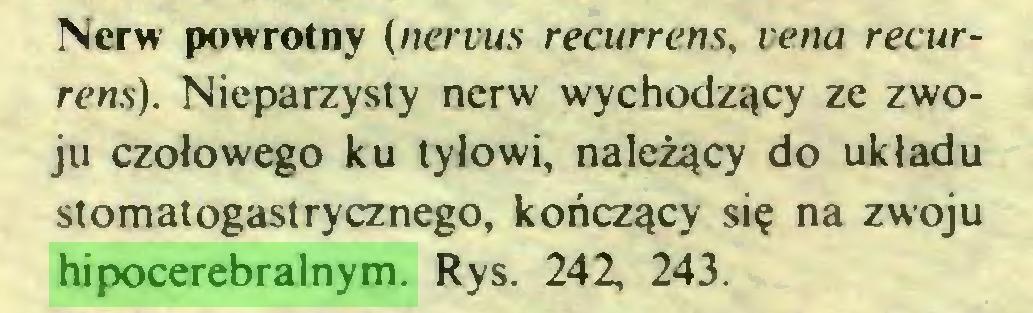(...) Nerw powrotny (nervus recurrens, vena recurrens). Nieparzysty nerw wychodzący ze zwoju czołowego ku tyłowi, należący do układu stomatogastrycznego, kończący się na zwoju hipocerebralnym. Rys. 242, 243...