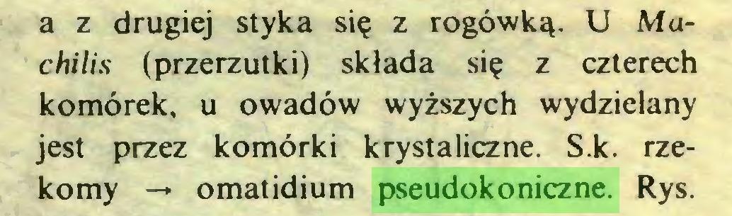 (...) a z drugiej styka się z rogówką. U Muchilis (przerzutki) składa się z czterech komórek, u owadów wyższych wydzielany jest przez komórki krystaliczne. S.k. rzekomy -• omatidium pseudokoniczne. Rys...