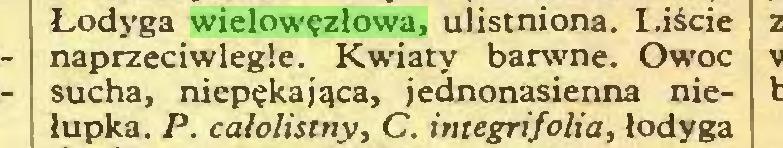 (...) Łodyga wielowęzłowa, ulistniona. l.iście naprzeciwległe. Kwiaty barwne. Owoc sucha, niepękająca, jednonasienna niełupka. P. calolistny, C. integrifolia, łodyga...