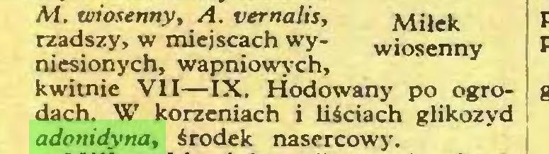 (...) A-i. wiosenny, A. vernalis, Miłek rzadszy, w miejscach wy- wiosenny niesionych, wapniowych, kwitnie VII—IX. Hodowany po ogrodach. W korzeniach i liściach glikozyd adonidyna, środek nasercowy...