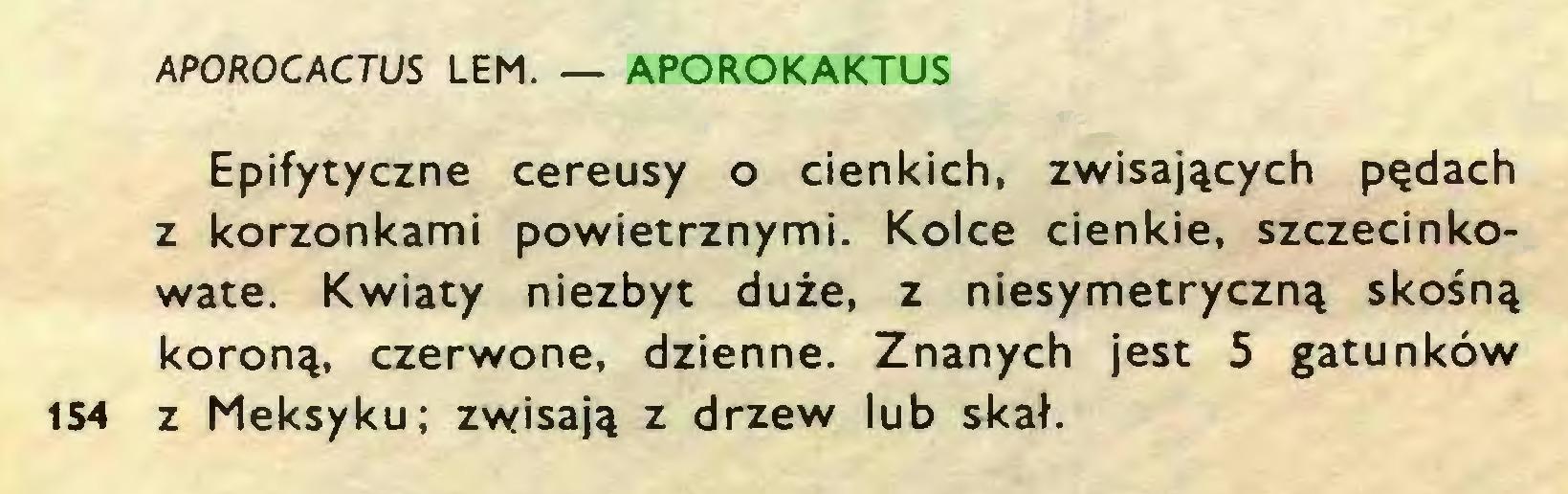 (...) APOROCACTUS LEM. — APOROKAKTUS Epifytyczne cereusy o cienkich, zwisających pędach z korzonkami powietrznymi. Kolce cienkie, szczecinkowate. Kwiaty niezbyt duże, z niesymetryczną skośną koroną, czerwone, dzienne. Znanych jest 5 gatunków 154 z Meksyku; zwisają z drzew lub skał...