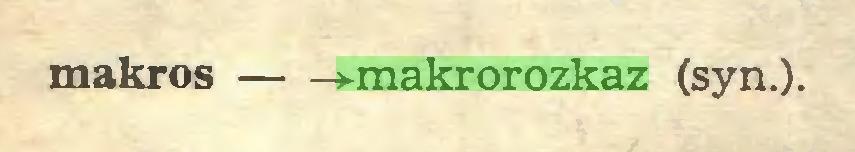 (...) makros »-makrorozkaz (syn.)...