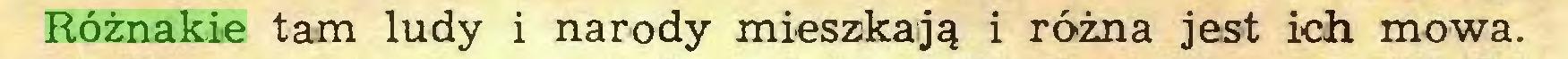 (...) Różnakie tam ludy i narody mieszkają i różna jest ich mowa...