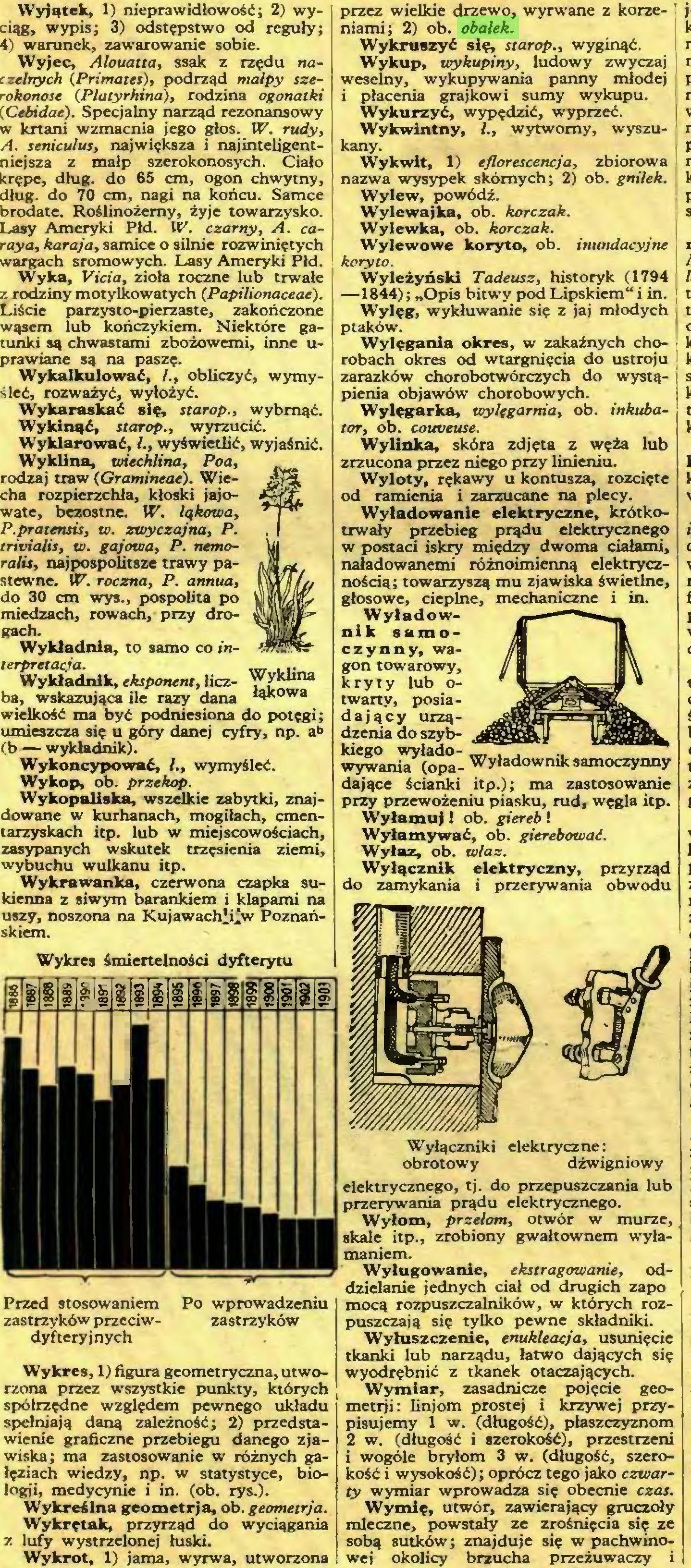 (...) Wykrot, 1) jama, wyrwa, utworzona przez wielkie drzewo, wyrwane z korzeniami; 2) ob. obałek...