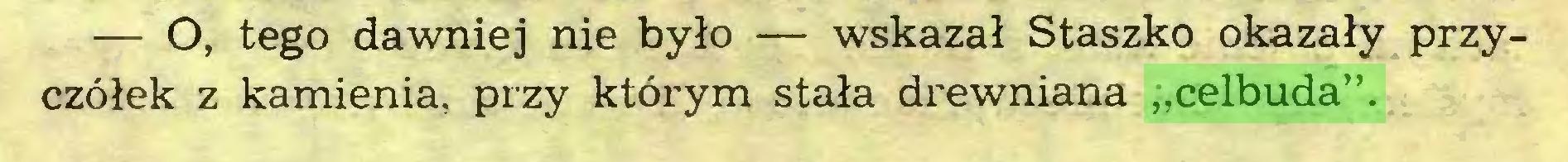 """(...) — O, tego dawniej nie było — wskazał Staszko okazały przyczółek z kamienia, przy którym stała drewniana """"celbuda""""..."""