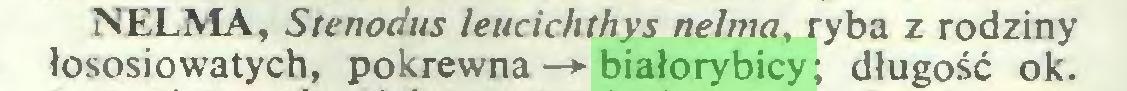 (...) NELMA, Stenodus leucichthys nelma, ryba z rodziny łososiowatych, pokrewna —*■ białorybicy ; długość ok...