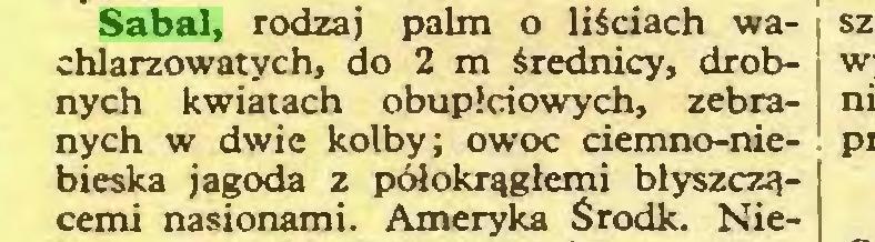 (...) Sabal, rodzaj palm o liściach wa- ; chlarzowatych, do 2 m średnicy, drób- : nych kwiatach obupłciowych, zebra- | nych w dwie kolby; owoc ciemno-niebieska jagoda z półokrągłemi błyszczącemi nasionami. Ameryka Środk. Nie...