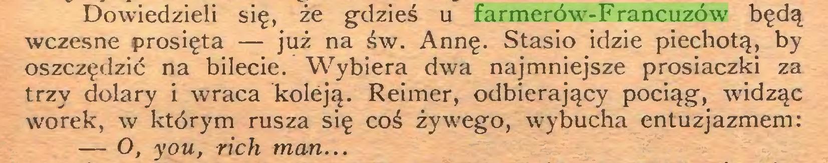 (...) Dowiedzieli się, że gdzieś u farmerów-Francuzów będą wczesne prosięta — już na św. Annę. Stasio idzie piechotą, by oszczędzić na bilecie. Wybiera dwa najmniejsze prosiaczki za trzy dolary i wraca koleją. Reimer, odbierający pociąg, widząc worek, w którym rusza się coś żywego, wybucha entuzjazmem: — O, you, rich man...