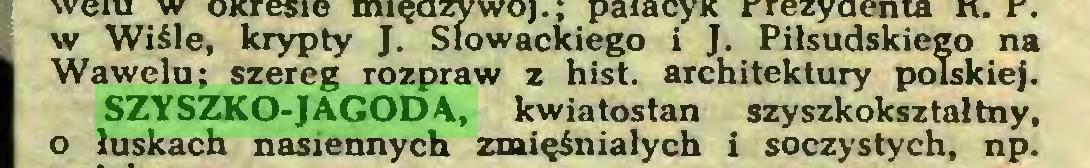(...) Wawelu; SZYSZKO-JAGODA, kwiatostan szyszkokształtny, o łuskach nasiennych zmięśniałych i soczystych, np...