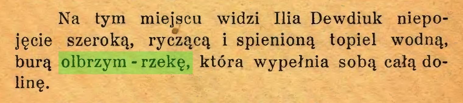 (...) Na tym miejscu widzi Ilia Dewdiuk niepojęcie szeroką, ryczącą i spienioną topiel wodną, burą olbrzym-rzekę, która wypełnia sobą całą dolinę...