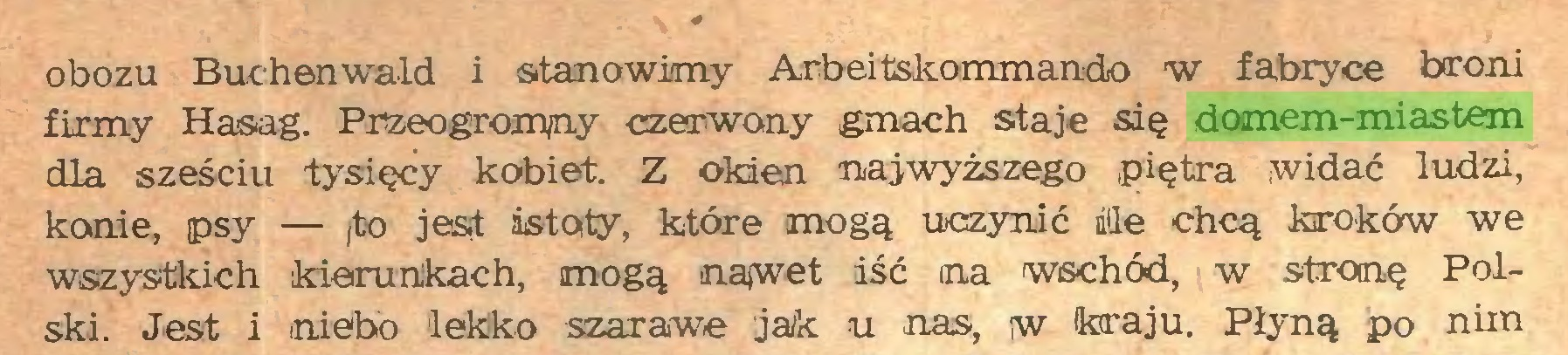 (...) obozu Buchenwald i stanowimy Arbeitskommando w fabryce broni firmy Hasag. Przeogromny czerwony gmach staje się domem-miastem dla sześciu -tysięcy kobiet. Z okien najwyższego piętra widać ludzi, konie, psy — fto jest istoty, które mogą uczynić ile chcą kroków we wszystkich kierunkach, mogą najwet iść na wschód, w stronę Polski. Jest i niebo lekko szarawe jak u nas, w kraju. Płyną po nim...