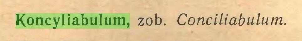 (...) Koncyliabulum, zob. Conciliabulum...
