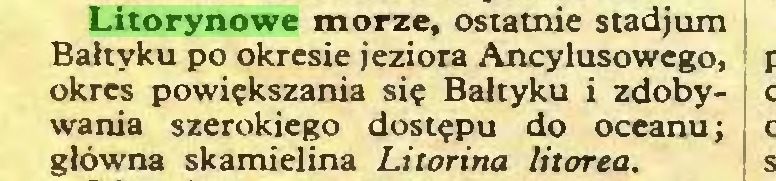 (...) Litorynowe morze, ostatnie stadjum Bałtyku po okresie jeziora Ancylusowego, okres powiększania się Bałtyku i zdobywania szerokiego dostępu do oceanu; główna skamielina Litorina litorea...