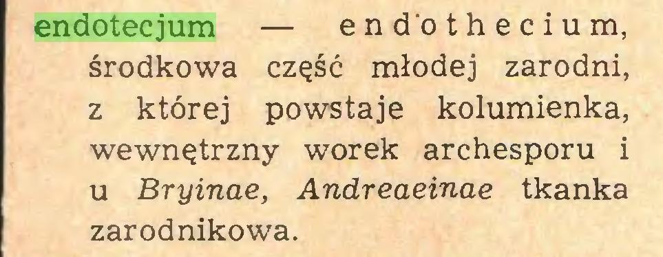 (...) endotecjum — endothecium, środkowa część młodej zarodni, z której powstaje kolumienka, wewnętrzny worek archesporu i u Bryinae, Andreaeinae tkanka zarodnikowa...