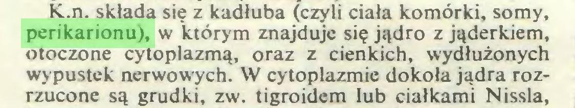 (...) K.n. składa się z kadłuba (czyli ciała komórki, somy, perikarionu), w którym znajduje się jądro z jąderkiem, otoczone cytoplazmą, oraz z cienkich, wydłużonych wypustek nerwowych. W cytoplazmie dokoła jądra rozrzucone są grudki, zw. tigroidem lub ciałkami Nissla,...