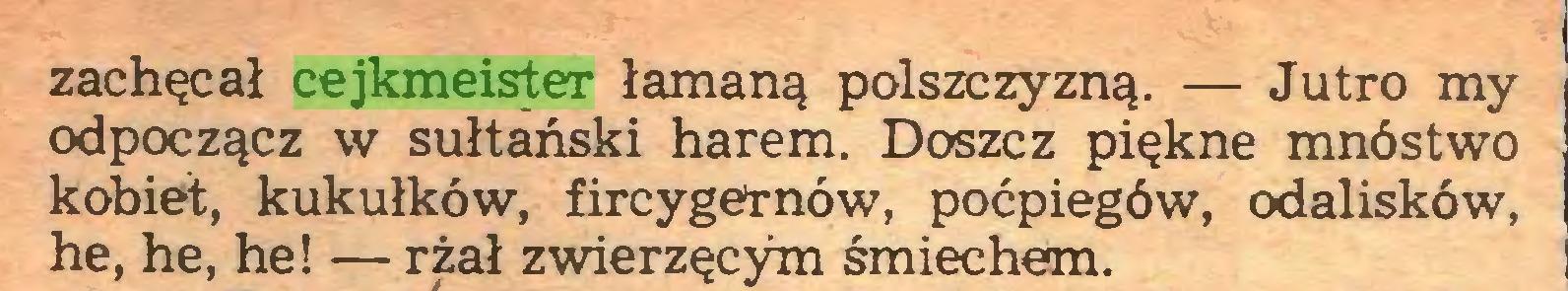 (...) zachęcał cejkmeister łamaną polszczyzną. — Jutro my odpoczącz w sułtański harem. Doszcz piękne mnóstwo kobiet, kukułków, fircygernów, poćpiegów, odalisków, he, he, he! — rżał zwierzęcym śmiechem...