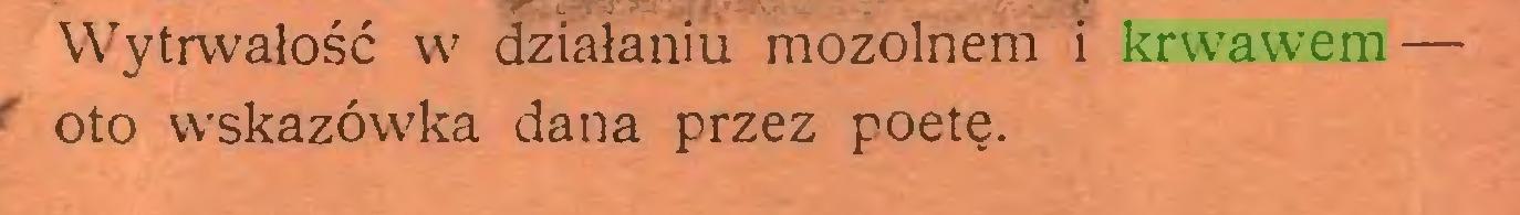 (...) Wytrwałość w działaniu mozolnem i krwawem — oto wskazówka dana przez poetę...