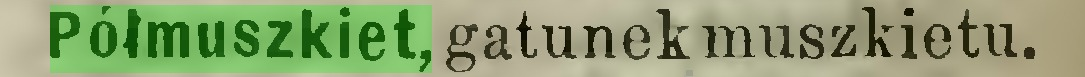 (...) Półmuszkiet, gatunek muszkietu...